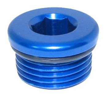Picture of O-Ring Plug