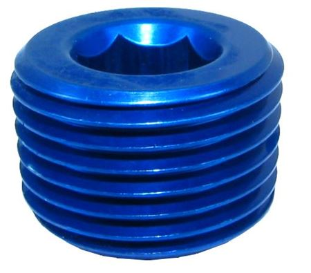 Picture of NPT Plug